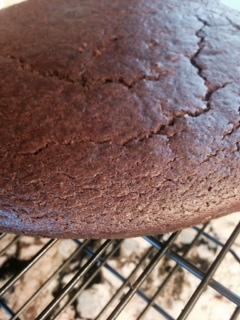 delicious-chocolate-cake